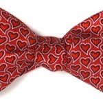 Image of The Fundraising Coach's bowtie